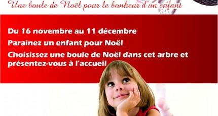 CAMPAGNE DE NOEL 2013